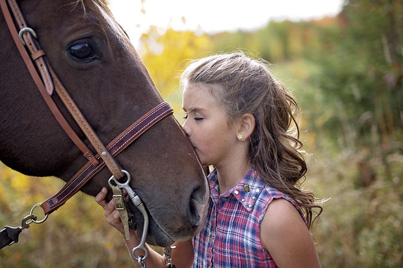 equine, horse, veterinary services, Saskatchewan